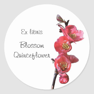 Pink quince flowers bookplate sticker