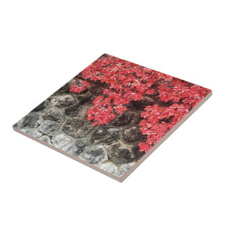 Pink red ivy leaves autumn stone wall tile