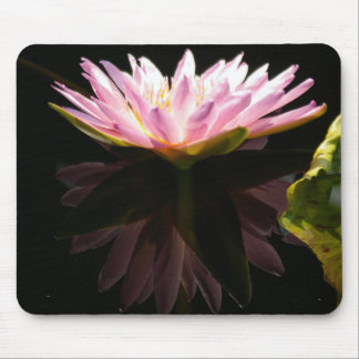 Pink Reflection Lotus Waterlily Mouse Pad