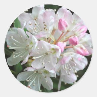 Pink Rhododendron  Flower Photo Classic Round Sticker