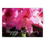 pink rhododendron flowers greeting cards
