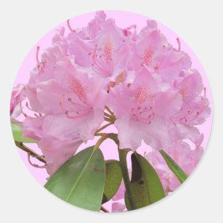 Pink Rhododendron Flowers Round Sticker