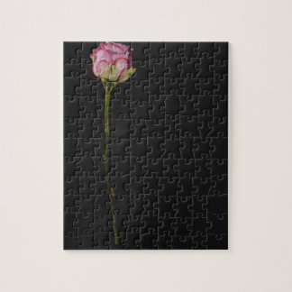 Pink rose 3 puzzle