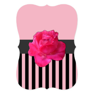 Pink Rose accented with light pink background Card