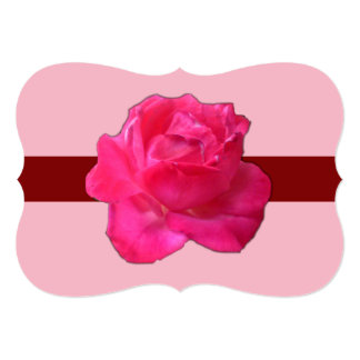Pink Rose accented with light pink background on Card