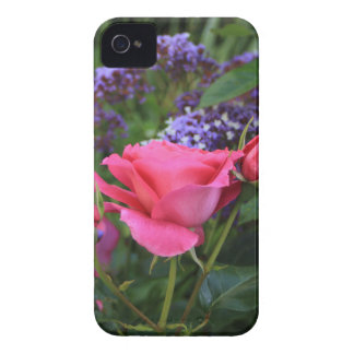 Pink rose and statice in garden iPhone 4 Case-Mate case