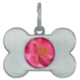 Pink Rose Center Pet ID Tag