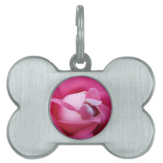 Pink Rose Center Pet Tag