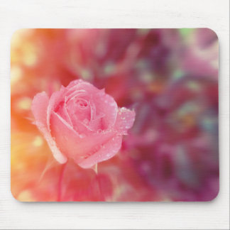Pink rose covered by morning dew mouse pad