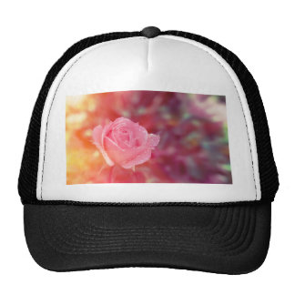 Pink rose covered by morning dew trucker hat