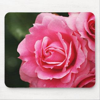 Pink Rose Flower Bloom Mouse Pad
