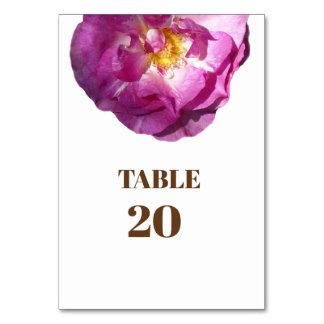 Pink Rose flower  Photo Card Tablecard, Basic