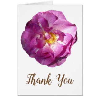 Pink Rose  Flower Photo Thank You Wedding Card