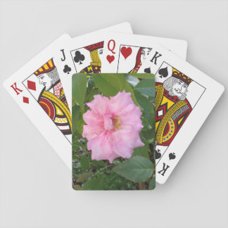 PINK ROSE FLOWER PLAYING CARDS