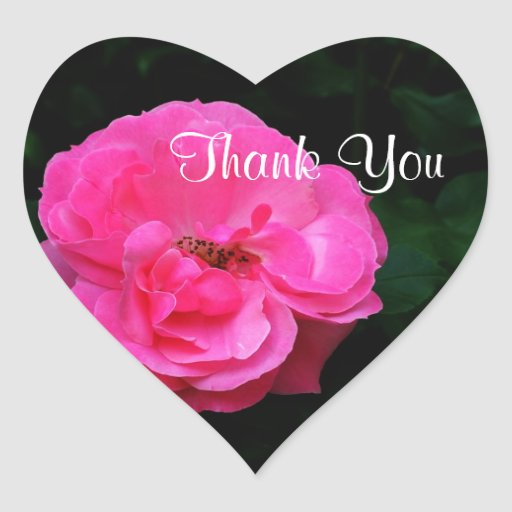 pink rose flower  thank you stickers stickers