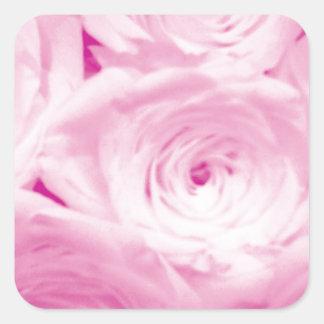 Pink rose flowers square sticker for wedding favor