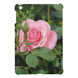 Pink rose flowers with water droplets in spring case for the iPad mini