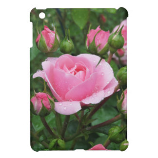 Pink rose flowers with water droplets in spring iPad mini cover