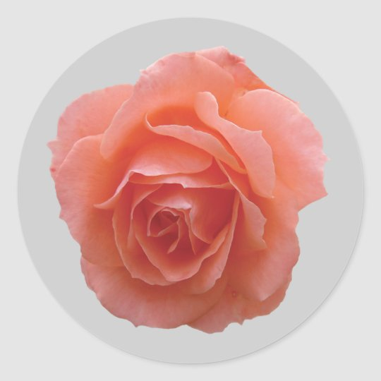 Pink Rose for You Classic Round Sticker