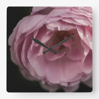 Pink rose in the darkness square wall clock