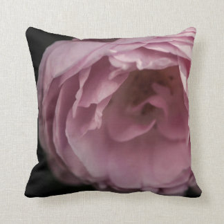 Pink rose in the darkness throw pillow