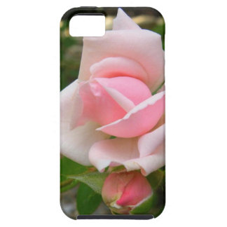 Pink Rose IPhone 6/6s Hard Case