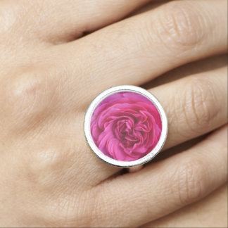 Pink Rose Love Photo Rings