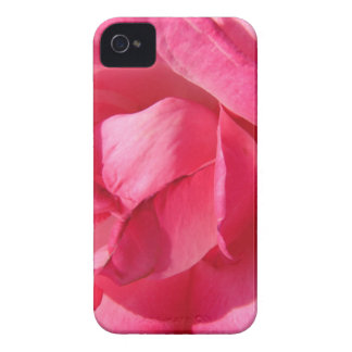 Pink Rose Petals iPhone 4 Case-Mate Cases