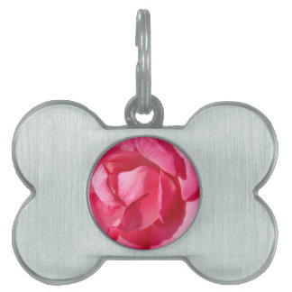 Pink Rose Petals Pet Name Tag