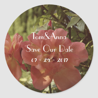 Pink Rose photography Save the date Sticker