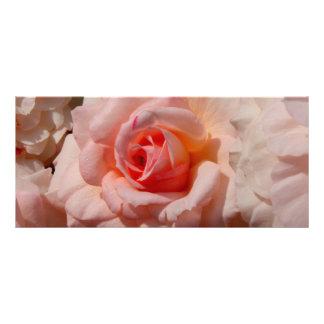 pink rose rack card