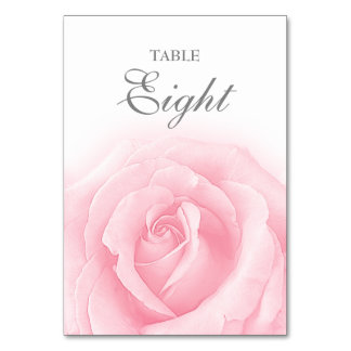 Pink Rose Romance Wedding Table Number 8 Card