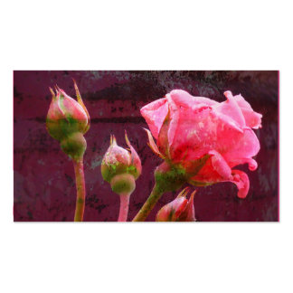 Pink Rose & Rosebud on a Grunge Background Business Cards
