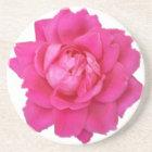 Pink Rose Sandstone Coaster