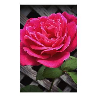 Pink Rose Stationery