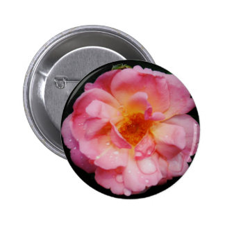 Pink Rose w/ Dew Drops Black Background Button