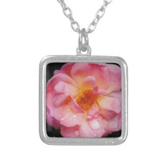 Pink Rose w Dew Drops Black Background Custom Jewelry