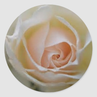 pink rose wedding favours classic round sticker