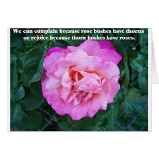 Pink Rose with Thorn Quote Card