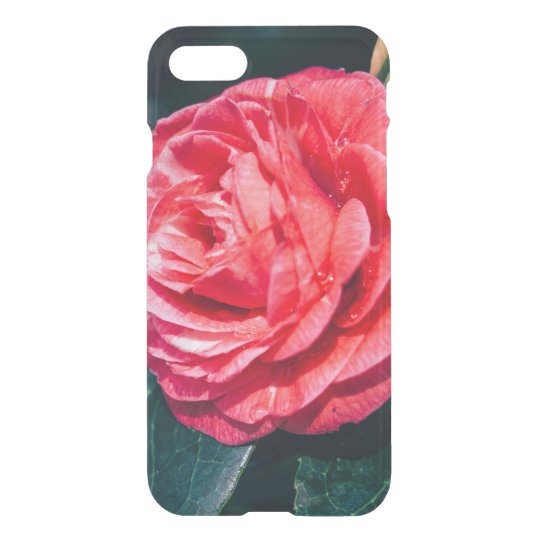 Pink Rose With Water Drops, Nature Photograph iPhone 7 Case