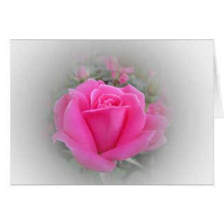 Pink Rose with White Card