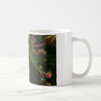 Pink Rosebud Mugs