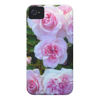 Pink Roses (Blackberry Bold) Case-Mate iPhone 4 Case