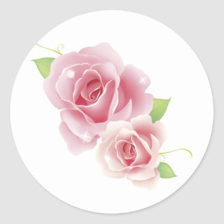 Pink Roses Fine Cute Girly Retro Floral Classic Round Sticker