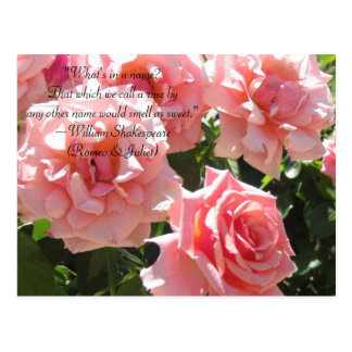 Pink Roses Shakespeare Quote Postcard