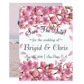 Pink Sakura Blossoms Save The Date Postcard