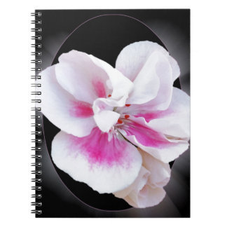 Pink Shades Notebook