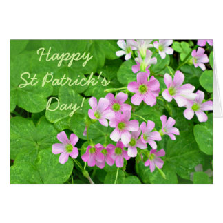 Pink Shamrock Flowers Happy St Patrick's Day Card