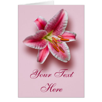 Pink Single Stargazer Lily Card