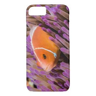 Pink Skunk Clownfish on the Great Barrier Reef iPhone 7 Case